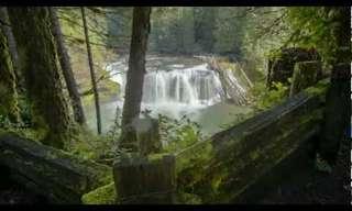 שמורות טבע מדהימות בצפון מערב אמריקה