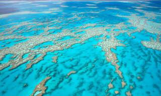 אילו נופים יזכו להיכלל בשבעת פלאי עולם הטבע?