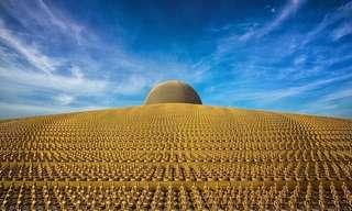 שערוריית המקדש הבודהיסטי