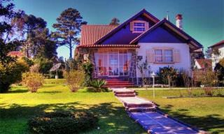 מדריכים להכנת חומרי ניקוי טבעיים לכל חלקי הבית