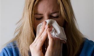 10 דברים חשובים שצריך לדעת על אלרגיות