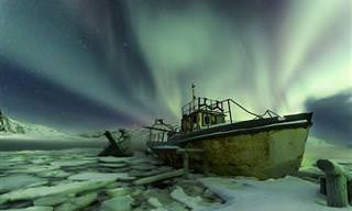 20 תמונות של מיטב צלמי נשיונל ג'יאוגרפיק