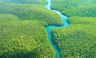 יופי, כוח ומי שתיה - הנהרות החשובים בעולם!