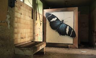 """גרפיטי פרפרים וציורי קיר מרהיבים נוספים של האמן """"מנטרה"""""""