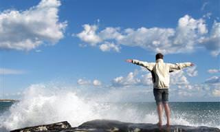 8 סיבות לכך שעליכם להפסיק לחפש אישורים מאחרים