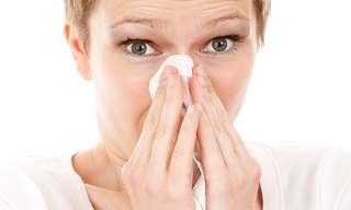 """כיצד להתמודד עם שפעת החזיריםד""""ר אריה אבני"""