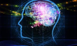 16 מזונות נפוצים שעוזרים לשמור על מוח חד ובריא