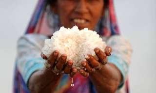 תמונות מדהימות מתעשיית המלח בהודו ואינדונזיה