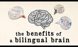 יתרונותיו של המוח הדו-לשוני