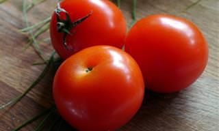 מדריך העגבניות שיעזור לכם לבחור בעגבנייה הנכונה למנה שלכם