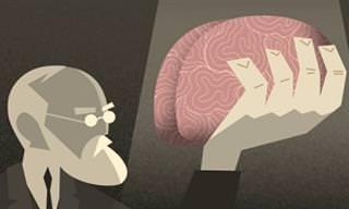 הסרטון הזה יגרום לכם לפקפק בדבריו של הפסיכולוג המוכר בעולם