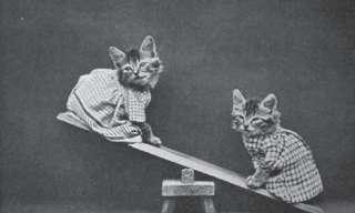 חיות מחמד חמודות בשנות השלושים