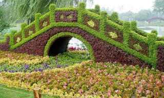 גינות מעוצבות בסין - יופי ללא דופי!