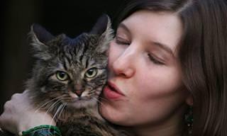7 טיפים שיעזרו לכם להתחבב על חתולים