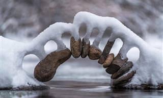 20 תמונות מדהימות של שלג