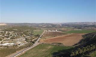 צאו למסע בעקבות דוד וגוליית על הרקע הפסטורלי של עמק האלה
