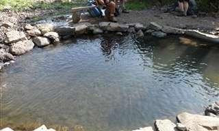 טיול מרענן: מעיינות קרירים בשיפולי הגולן לעת קיץ
