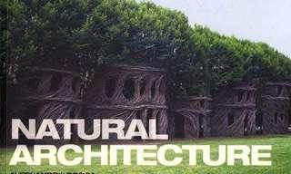 אדריכלות של הטבע