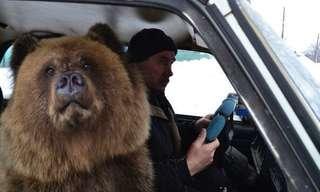 יש דברים שקורים רק ברוסיה
