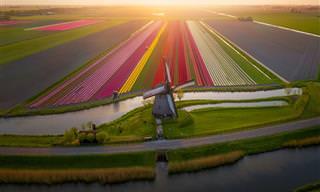 18 תמונות קסומות של הולנד