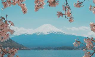 17 תמונות מדהימות שמציגות את יפן האותנטית