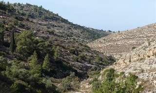 טיול בהרי ירושלים: אזור נטף ונחל יתלה