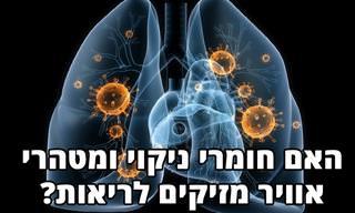 מהי ההשפעה של מטהרי אוויר וחומרי ניקוי על הריאות?