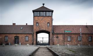 10 תיעודים משרידיהם של מחנות השמדה וריכוז