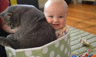 אוסף תמונות מחממות לב של ילדים וחיות המחמד שלהם