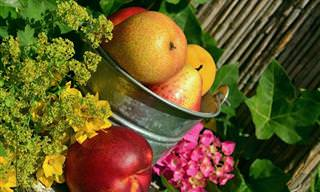 12 דרכים טעימות לניצול פירות בשלים שעומדים להתקלקל