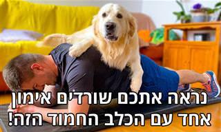 כלב חמוד שלא מוכן לתת לבעלים שלו להתאמן