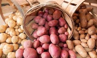 המדריך המלא לזנים שונים של תפוחי אדמה