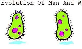 התפתחות המינים
