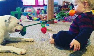 17 תמונות משעשעות וחמודות של ילדים וחיות המחמד שלהם