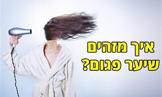 4 מבחנים לזיהוי שיער פגום וטיפים לשיפור בריאותו