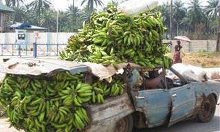 יש דברים מצחיקים שאפשר לראות רק באפריקה...