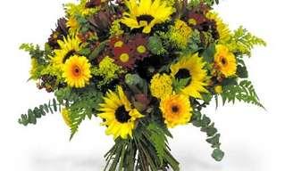 קיבלתי פרחים היום - שיר מרגש ומאד אקטואלי בימינו!