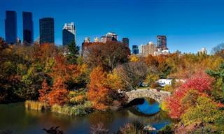 10 אתרי טיולים של טבע בניו-יורק