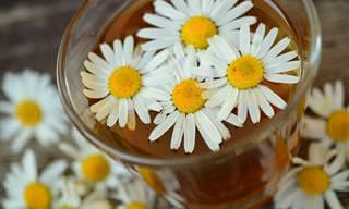 9 משקאות טבעיים להקלה על קשיי עיכול