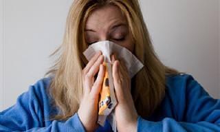 8 מיתוסים על מחלת השפעת