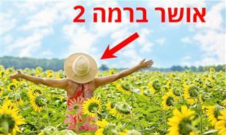 8 סוגי האושר – גלו אילו הם העוצמתיים ביותר
