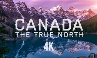 רוצים לראות את מרחבי הטבע המרהיבים של קנדה? זה הסרטון בשבילכם!