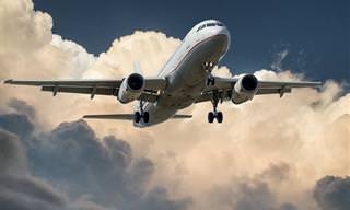 סיפורים מחייהם של 8 טייסים וטייסות מהארץ ומהעולם