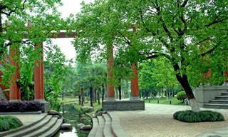 12 פארקים לאומיים יפהפיים בסין