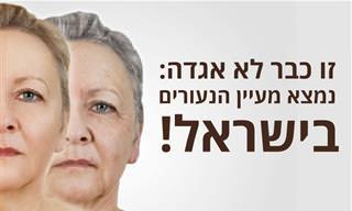 מחקר מאוניברסיטת תל אביב גילה איך להחזיר לאחור את תהליך ההזדקנות