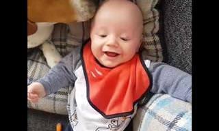 החברות בין כלבים לתינוקות מוצגת בסרטון מקסים ומתוק במיוחד!