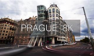 יום בחיי פראג באיכות 8K