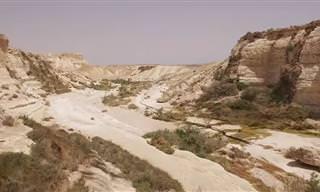 סרטון 4K מופלא של הגן הלאומי עין עבדת