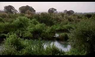 הטבע הישראלי שופע מים