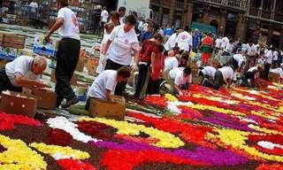 שטיח הפרחים המדהים בבריסל